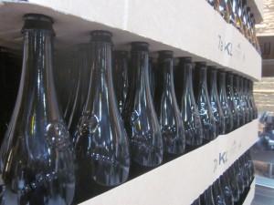 Bottle bottle in the line